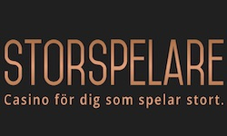 logo for Storspelare