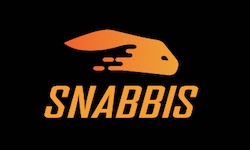logo for Snabbis Casino